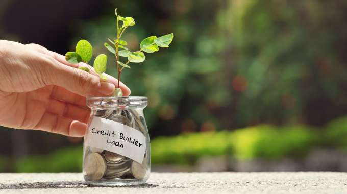 Jar of coins with sprouting plant representing improved financial situation